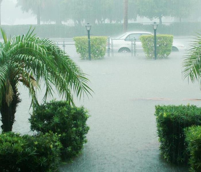 Storm Damage Professionals Talk About Flood Damage Restoration in Orlando