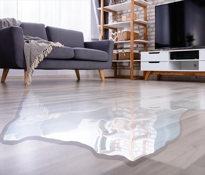 Water pooling on living room floor.  Also shows sofa and TV