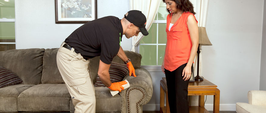 Windermere, FL carpet upholstery cleaning